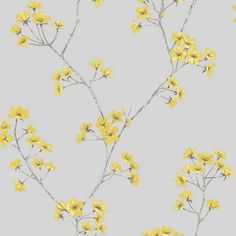 Home Of Colour Harmony Wallpaper - Zest
