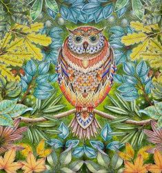 Coloring of Johanna Basford's Secret Garden - Owl by Betty Hung Colouring Pages, Coloring Books, Adult Coloring, Secret Garden Book, Johanna Basford Secret Garden, Garden Owl, Secret Garden Coloring Book, Whimsical Owl, Johanna Basford Coloring Book