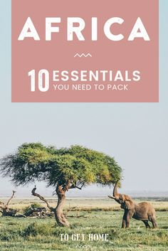 10 Essentials you need to add to your packing list for stress-free backpacking in East Africa. Kenya Travel, Africa Travel, Travel Europe, Italy Travel, Africa Destinations, Travel Destinations, Holiday Destinations, London Big Ben, Travel Guides
