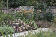 contemporary back garden - town & courtyard garden design - garden design portfolio - garden design edinburgh & scotland