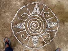 shell mandalas