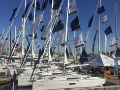 Strictly Sail