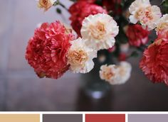*Lovely Clusters - The Pretty Blog: Color Inspiration: Carnations