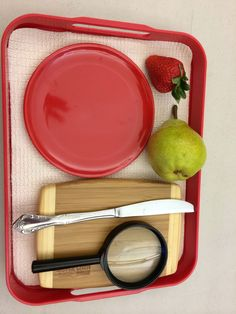 Montessori fruit dissection