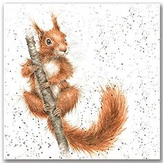 "Wrendale Designs Signed Animal Print / Portrait - Red Squirrel ""Tufty"""