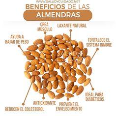 Beneficios de las ALMENDRAS Dog Food Recipes, Healthy Recipes, Keto Flu, Juicing Benefits, Natural Medicine, Healthy Mind, Diet And Nutrition, I Love Food, Healthy Lifestyle