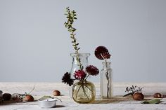 KC-Tablescape_0610_food52_mark_weinberg by Photosfood52, via Flickr