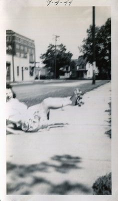 Vintage Photo..It's All Fun and Games 1944, Original Photo, Old Photo Snapshot…