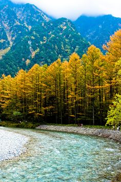 Kamikochi, Nagano, Japan - photo by Chen Qu The Places Youll Go, Places To Visit, Beautiful World, Beautiful Places, Wonderful Places, Nagano Japan, Paris Match, Mellow Yellow, Bright Yellow