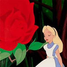 Disney | Alice in Wonderland #Alice #rose #gif
