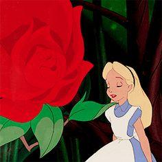 Disney | Alice in Wonderland #Alice #rose #gif