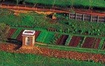 An awesome vegetable garden.  (Like at Monticello!)