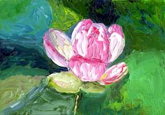 """Pink Water Lily by Marcy Brennan  Oil on 5"""" x 7"""" canvas panel - $100"""