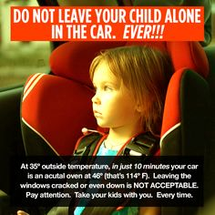 Do not leave any living thing alone in a vehicle.