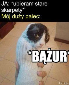 Bts Memes, Funny Memes, Polish Memes, Weekend Humor, Nyan Cat, Some Quotes, Creepypasta, Cringe, Haha