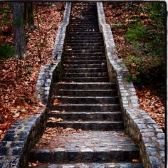 Forest Hill Park in Richmond, VA Wow do I remember running dow these steps to get to the lake!