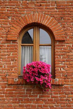 I wanna a window with beautiful flowers.