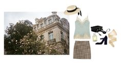 """in paris, in love"" by sylphic ❤ liked on Polyvore featuring Dolce&Gabbana, Zara, Carine Gilson, Missoni, Mark Cross, Creed, Wolford and Mich Dulce"