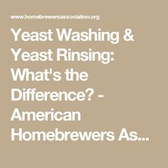 Yeast Washing & Yeast Rinsing: What's the Difference? - American Homebrewers Association