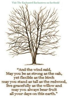 And the Wind Said