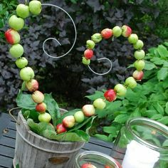 More hagebutten Tinker with apples. More - Diy Fall Decor Fall Home Decor, Autumn Home, Nature Crafts, Fall Crafts, Wood Trellis, Deco Nature, Apple Harvest, Deco Floral, Theme Noel