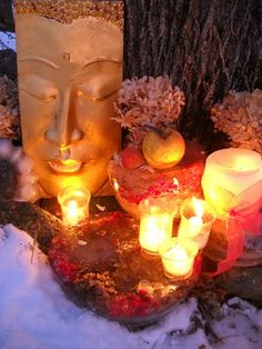 A Buddha shrine in the snow with dried hydrangea flowers. Happy New Year
