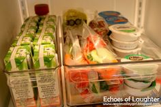 Echoes of Laughter: 6 Best Organizing Tips for Back To School...juice box bin & food bin with yogurts, prepacked veggies & fruits & dips