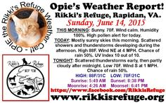OPIE'S WEATHER REPORT! - Rikki's Refuge, Rapidan, VA. - SUNDAY, JUNE 14, 2015 - Flag Day Forecast - www.rikkisrefuge.org