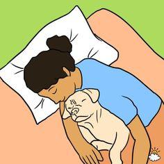 Faire dormir son chien avec soi dans son lit? C'est loin d'être une aberration pour beaucoup de propriétaires de toutous. Les arguments en...