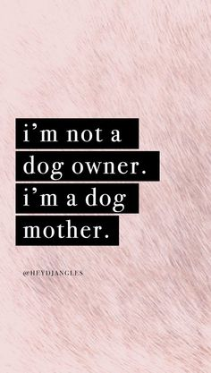 I'm not a dog owner. I'm a dog mother. Check out our free hd dog quote wallpapers for mobile right here - new designs added regularly ; Best Dog Quotes, Cute Dog Quotes, Puppy Quotes, Dog Lover Quotes, Cat Quotes, Animal Quotes, Love For Dogs Quotes, Dog Quotes Inspirational, Dog Qoutes