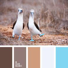 Die pastellen Brauntöne machen eine klassische Kombination aus Weiß und Blau romantischer. Dankder Farbenintensität konkurrieren Braun und Hellblau nicht,.