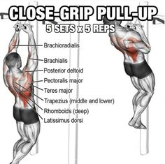Back Workout Plan To Build a Stronger Back. Building a stronger back may seem a bit hard. After all, results may take a little time to really show. You need to remember, though, that your back is a pretty large area to cover and most tend to include the trapezius muscle in this region of training.