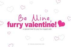 Valentine's Day: Peanut Butter & Yogurt Treats for your Pooch! Valentine Treats, Valentines Day, Sausage Dogs, Do Love, Yogurt, Peanut Butter, Lifestyle, Valentine's Day Diy, Beer Brats