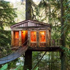 Best Of Fall City Treehouses