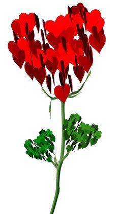 Wallpaper Nature Flowers, Rose Flower Wallpaper, Flower Background Wallpaper, Flower Backgrounds, Rose Flower Hd, Rose Flower Pictures, Flower Images, Beautiful Flowers Pictures, Cute Love Pictures