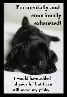 I'm mentally and emotionally exhausted!  I would have added physically, but I can still move my pinky.