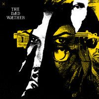 "The Dead Weather - ""Open Up (That's Enough)"""