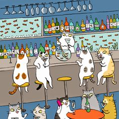 Cocktails for cats