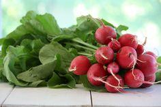 Fermented Radishes - A Recipe For Thyroid Healing 3.5c. radishes, 2-3 garlic cloves, 3T. sea salt, 4c. water.