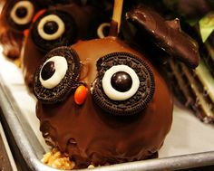 Candy Apple Owl With Oreo Eyes #owl #Oreo #apple #candy #sweet #dessert