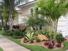 Get guidelines for loving a stunning Florida Gardening, landscape, or lawn. Our professionals tell you everything necessary to actually Florida gardening and landscaping Side Yard Landscaping, Florida Landscaping, Florida Gardening, Tropical Landscaping, Landscaping Ideas, Palm Trees Landscaping, Mailbox Landscaping, Landscaping Software, Back Gardens