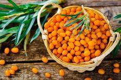 Die kleinen Sanddorn-Beeren haben es in sich: Ihre leuchtend gelb-orange Farbe bekommen sie durch einen hohen Gehalt an Beta-Carotin. Davon liefern sie sogar mehr als Karotten.