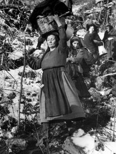 robert-capa-italian-refugee-women-carrying-their-belongings-in-baskets-while-fleeing-their-homes-in-wwii_i-G-27-2759-1B2TD00Z.jpg (366×488)