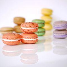 The Macaron Trials