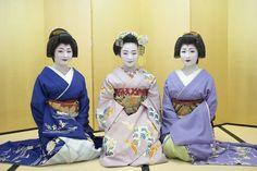 geishas & maiko