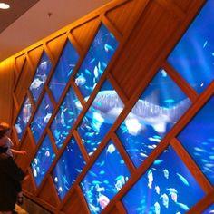Aquarium géant interactif à So Ouest - Levallois-Perret, Île-de-France