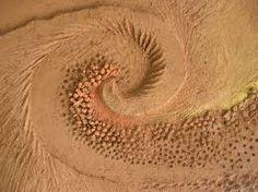 Risultati immagini per elemento terra