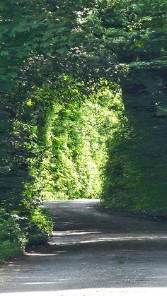 Der Weg ins Helle, Hintegrundbild für Huawei P9, 1080x1920 px
