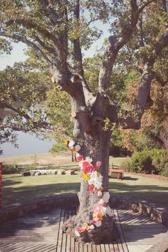 Paper Flower Installation on Large Tree   Maggie + Greg's Wedding :: October 2011   Simply Charming Socials   Atlanta Wedding Planner