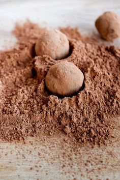 ... chocolate truffles caramel dark chocolate truffles with fleur de sel